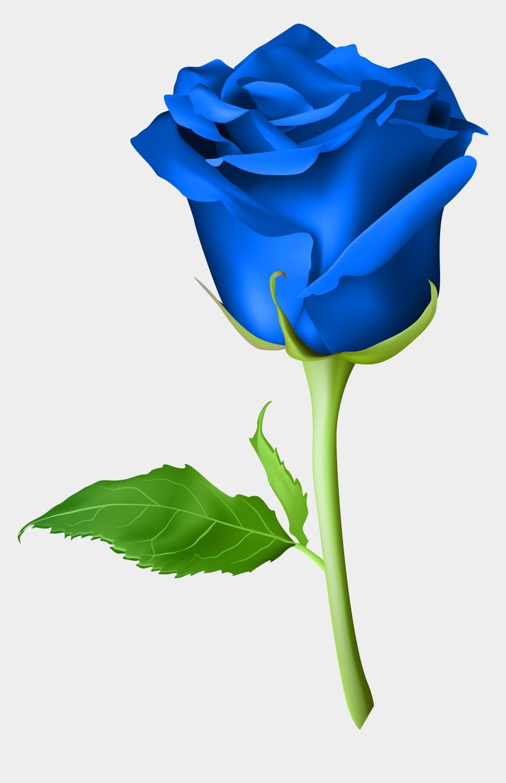 rose clip art, Cartoons - Rose Blue Transparent Png Clip Art Imageu200b Gallery - Blue Rose Flower Png