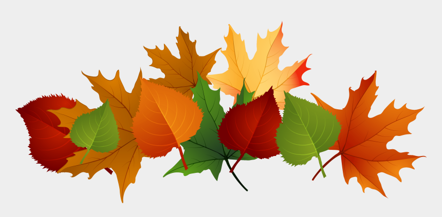 fall clipart, Cartoons - Autumn Clip Art - Fall Leaves Transparent Background