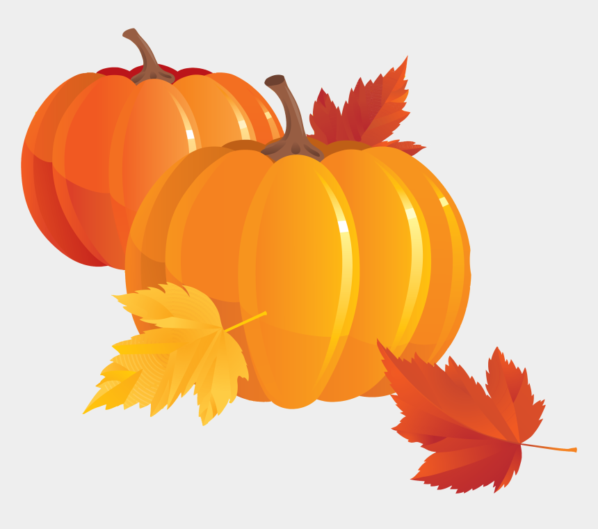 pumpkin clip art, Cartoons - Transparent Pumpkins Clip Art - Fall Pumpkin Clip Art