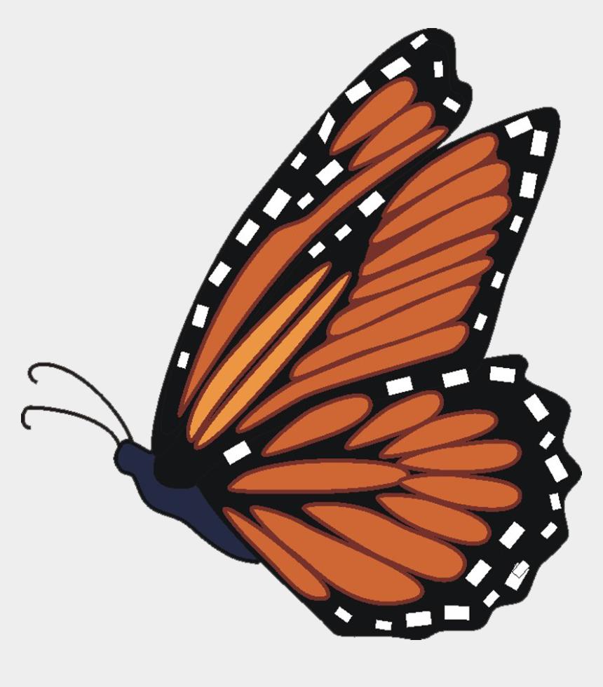 butterfly clip art, Cartoons - Download - Flying Monarch Butterfly Cartoon