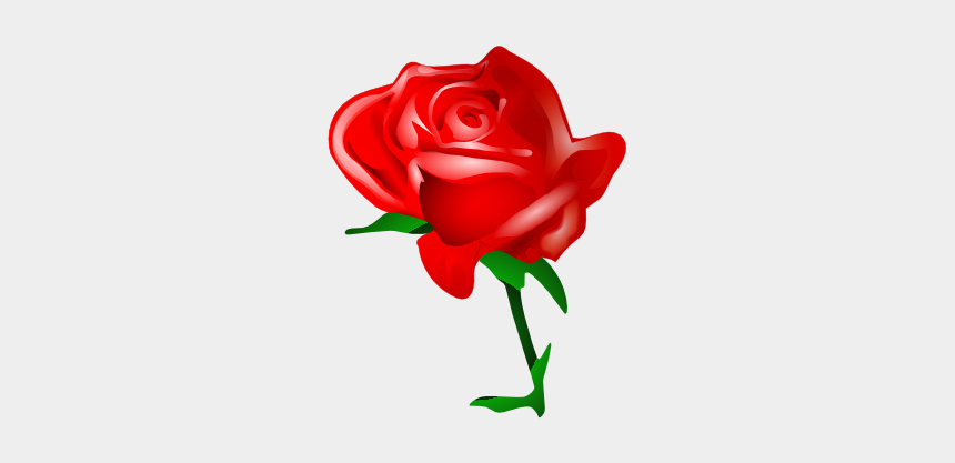 rose clip art, Cartoons - Red Rose Graphics - Valentines Day Roses Clipart