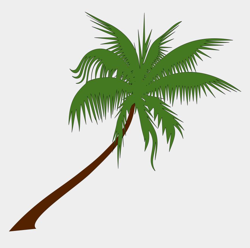 tree clip art, Cartoons - Palm Trees Clip Art Png - Palm Tree Clipart Hd