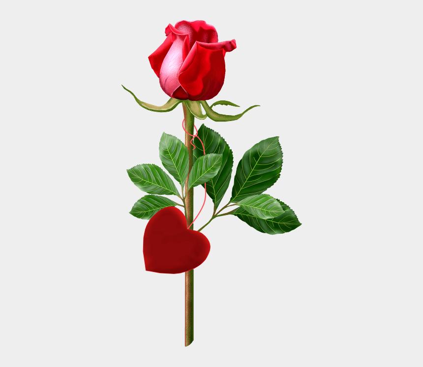 rose clip art, Cartoons - Single Rose Clipart - Good Morning Single Rose