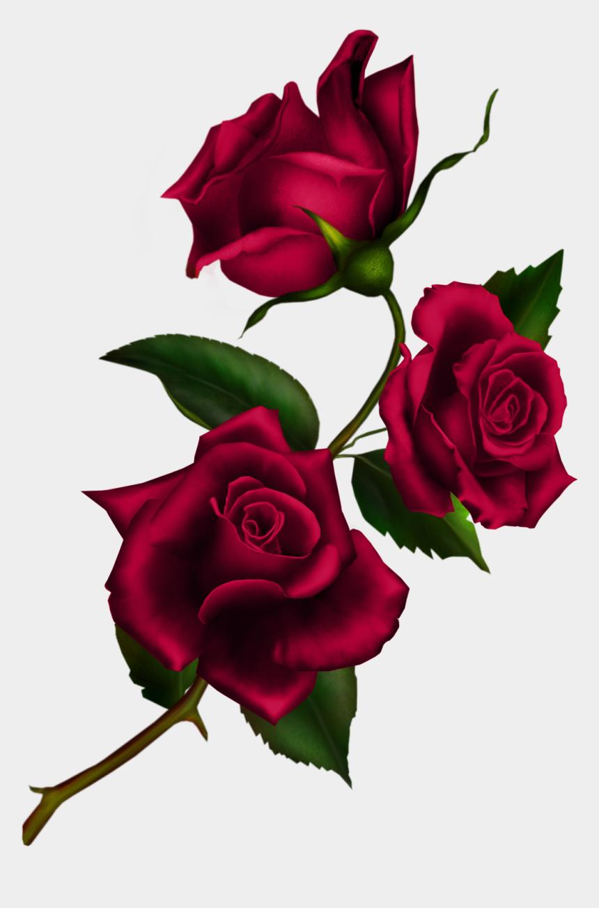 rose clip art, Cartoons - Free Download Rose Gothic Png Clipart Rose Clip Art - Roses And Stem Png