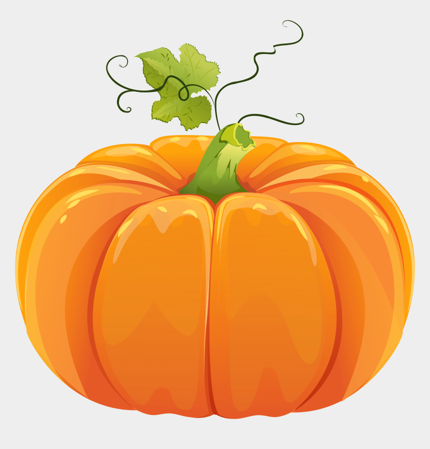 pumpkin clip art, Cartoons - Autumn Pumpkin Clipart - Pumpkin Clipart No Background