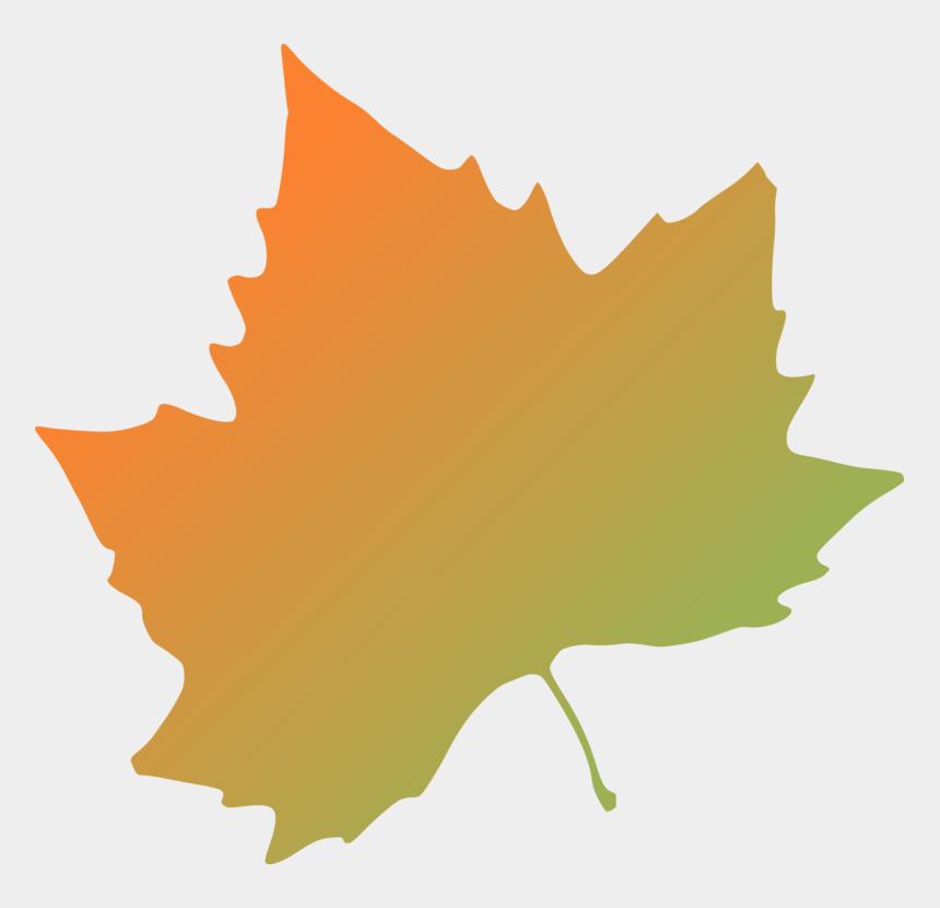 leaf clipart, Cartoons - Autumn Leaf Clipart Free - Autumn Leaves Clip Art