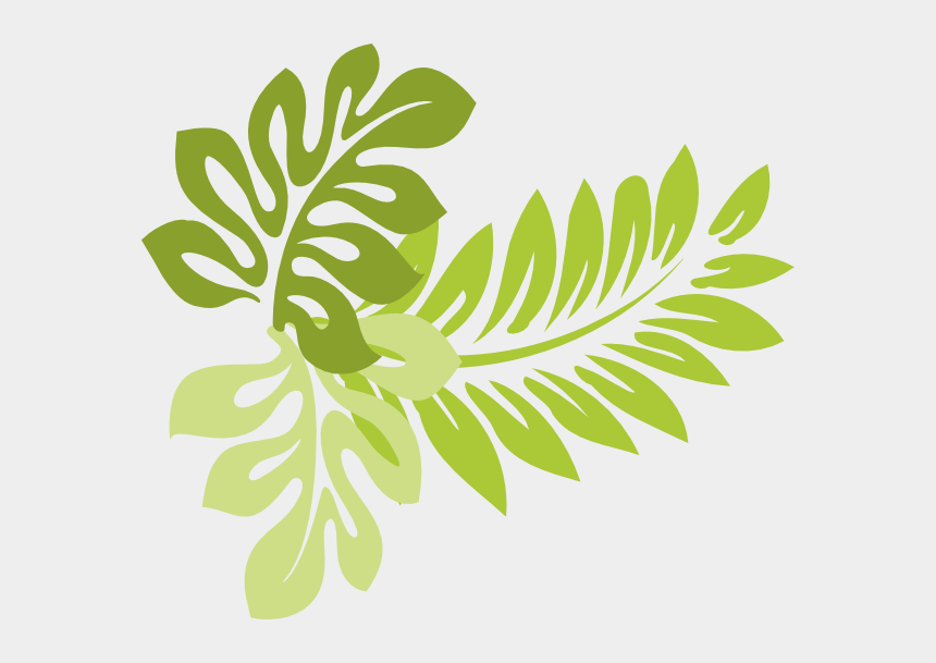leaf clipart, Cartoons - Tropical Leaves Clipart Clipart Kid - Tropical Leaf Clip Art