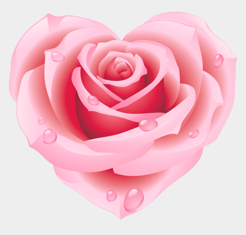 rose clipart, Cartoons - Pink Rose Clipart Pink Heart - Rose Shaped Like A Heart