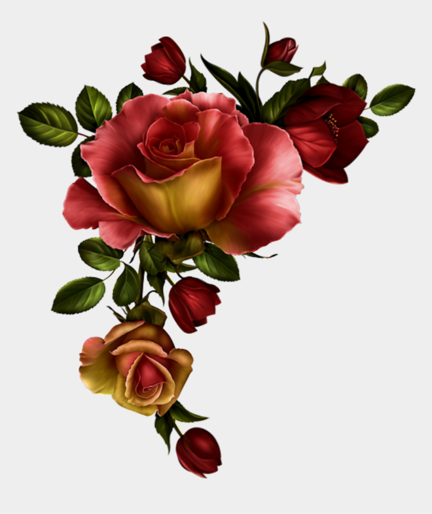 rose clipart, Cartoons - Floral Divider Png - Watercolor Red Roses Png