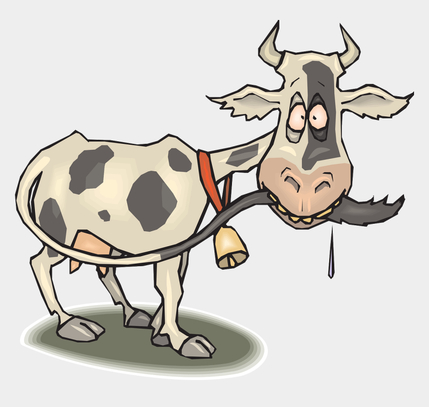 cow clipart, Cartoons - Cattle Clipart Cow Tail - Thin Cow Clipart