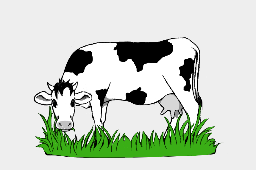 cow clipart, Cartoons - Collection Of Grazing High Quality Free Ⓒ - Cow Grazing Clipart
