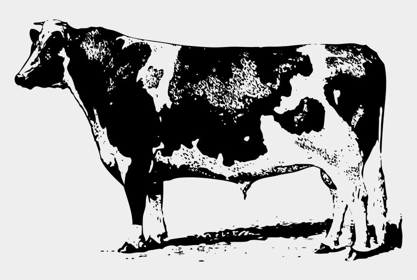 cow clipart, Cartoons - Beef Vector Holstein Cow - Holstein Bull Clip Art