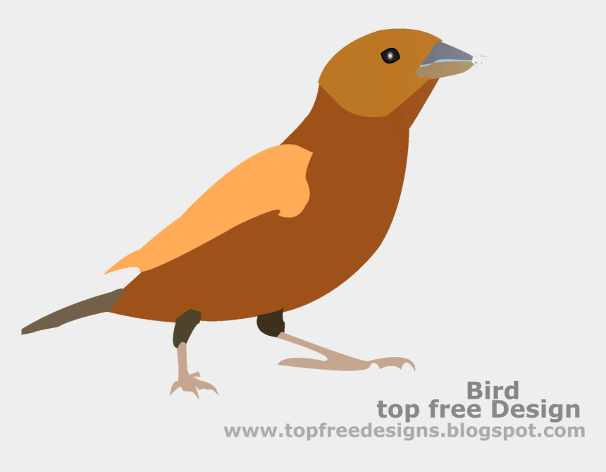 bird clipart, Cartoons - Freedom Leisure , Png Download - Freedom Leisure