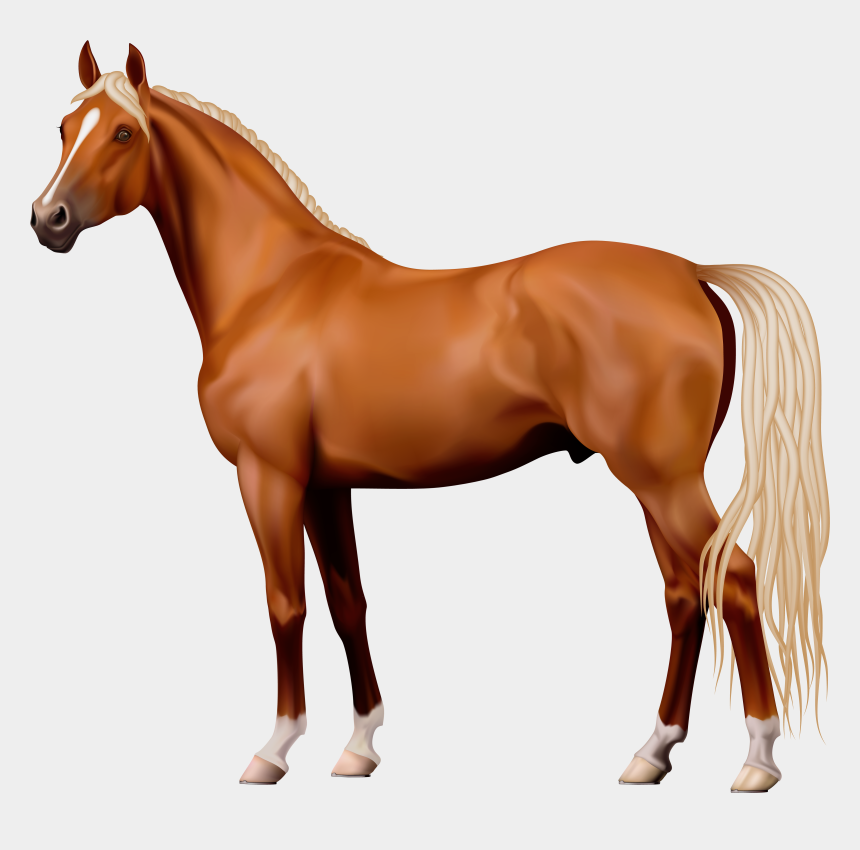 horse clipart, Cartoons - Brown Horse Png Clipart - Transparent Background Horse Clipart