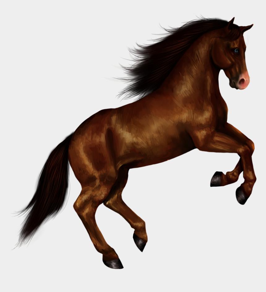 horse clipart, Cartoons - Horse Clip Art Wild Horse - Standing Horse