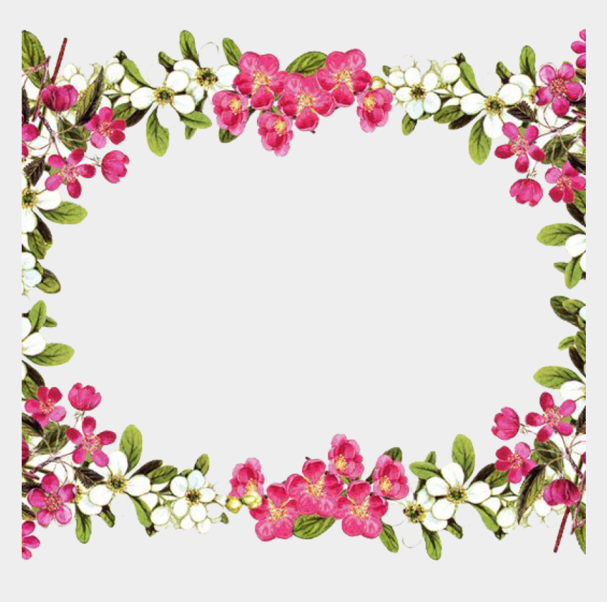 animal clipart, Cartoons - Flowers Borders And Frames