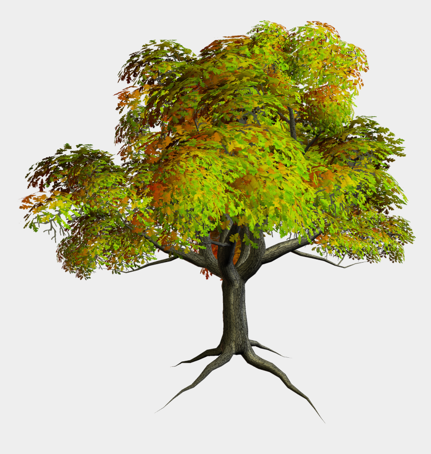 tree clipart, Cartoons - Autumn Tree Clipart - Png Format Tree Clipart Png