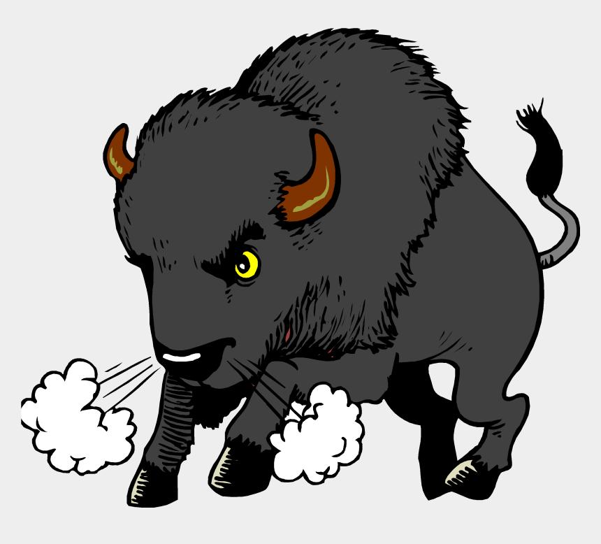 school clipart, Cartoons - Buffalo Elementary - West Middle School Buffalo