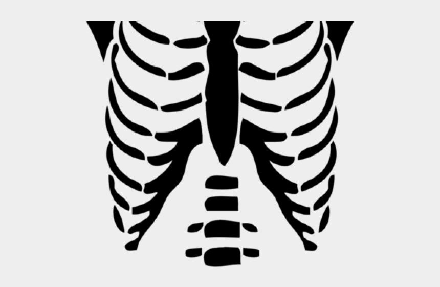 Chest Clipart Skeleton Roblox T Shirt Transparent Cliparts