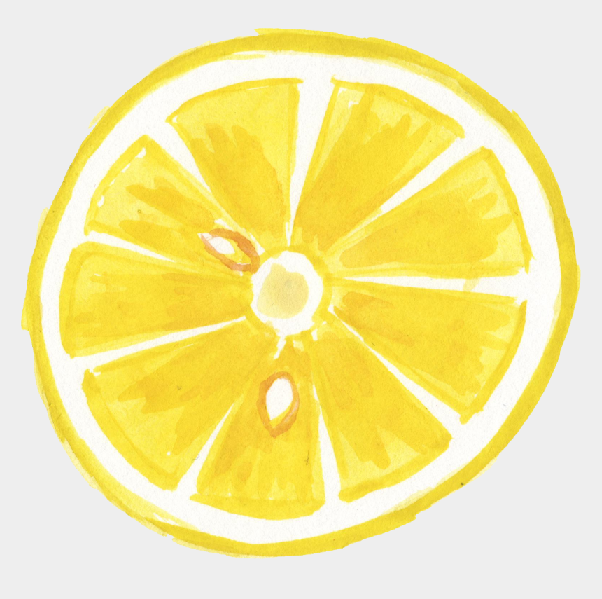lemon clip art, Cartoons - Lemon Slice Png - Watercolor Lemon Clipart