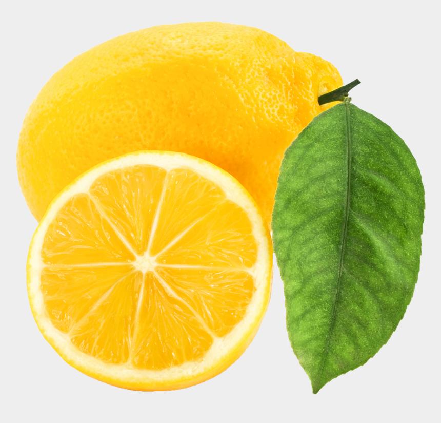 lemon clip art, Cartoons - Lemon Clip Art Free Clipart Images 2 Clipartbold - Lemon Clipart Png