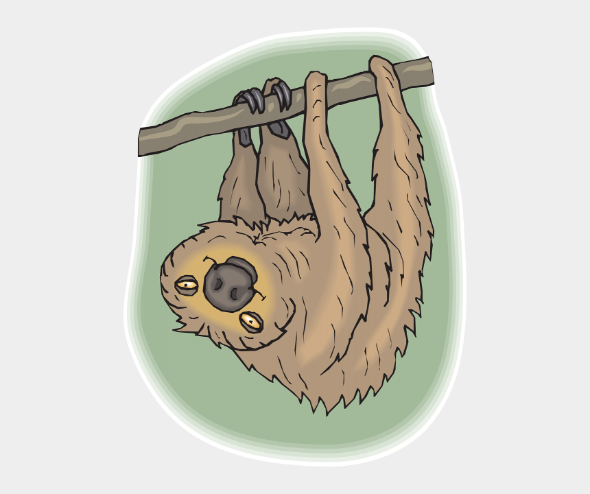 sloth clipart, Cartoons - Vector Graphics - Costa Rica Animals Coloring Pages