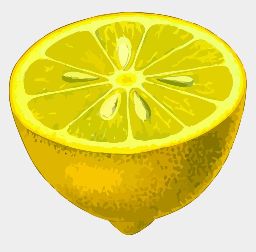 lemon clip art, Cartoons - Half-lemon - Low Resolution Image Png