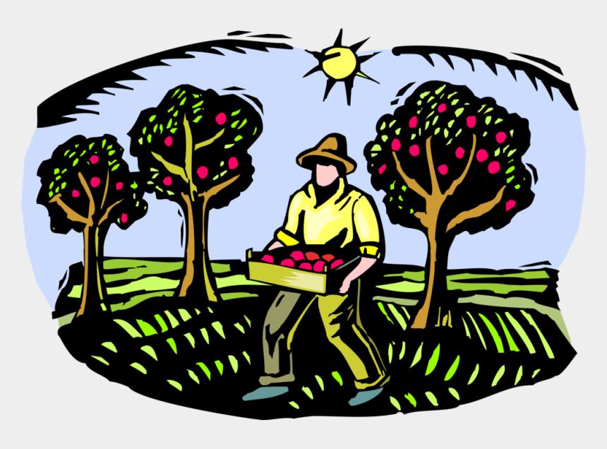 picking apples clipart, Cartoons - Vector Illustration Of Apple Orchard Fruit Harvest - Harvest