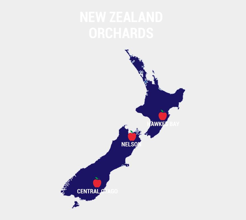 picking apples clipart, Cartoons - Philip Greer - New Zealand Map Art