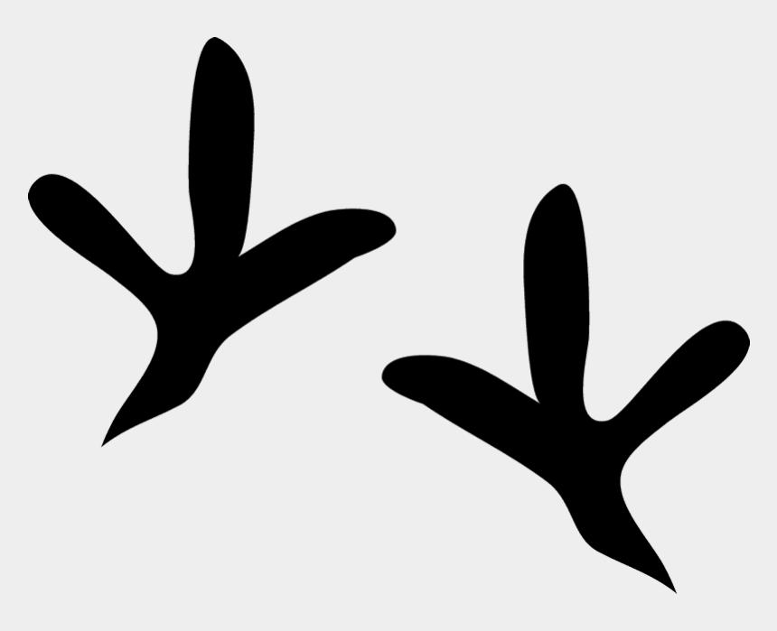 animal tracks clipart, Cartoons - Pigeon Tracks Rubber Stamp - Pigeon Tracks