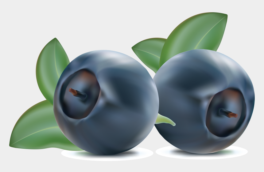 blueberries clipart, Cartoons - Blueberries Png - Clipart Blueberries Png
