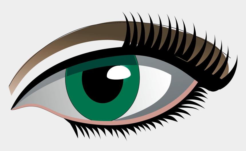 eye lash clipart, Cartoons - Eyelash Clipart Simple Eye - Desenho De Olho Vetor