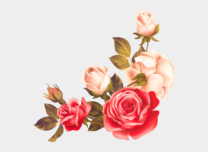 bouquet of flowers clipart, Cartoons - Rose Floral Border Png
