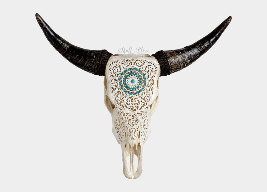 cow skull clipart, Cartoons - Carved Cow Skull // Xl Horns - Longhorn Skull With Turquoise