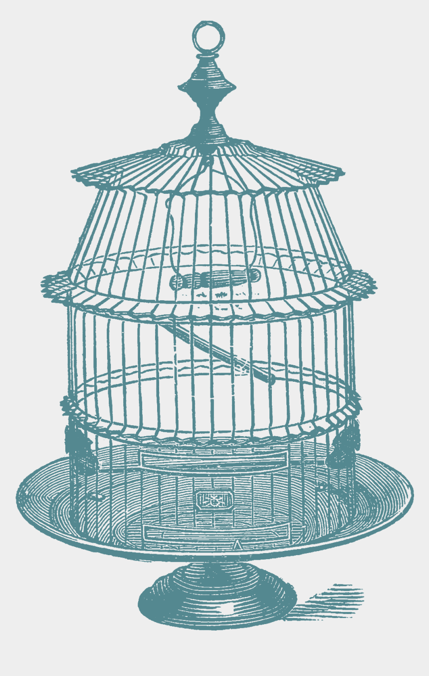 cage clipart, Cartoons - Another Set Of Bird Cage Stock Images Oh So Nifty Vintage - Drawing