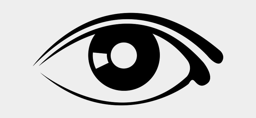 eyeballs clipart, Cartoons - Clip Art Of Eye