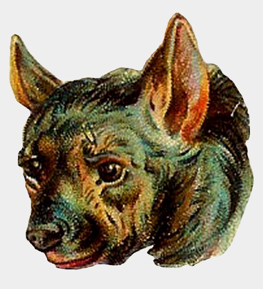 hyena clipart, Cartoons - Digital Hyena Clip Art - Companion Dog