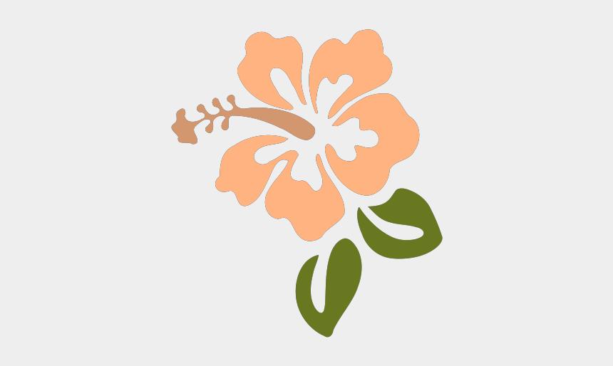 hibiscus clipart, Cartoons - Hibiscus Svg Clip Arts 600 X 577 Px - Hibiscus Clip Art