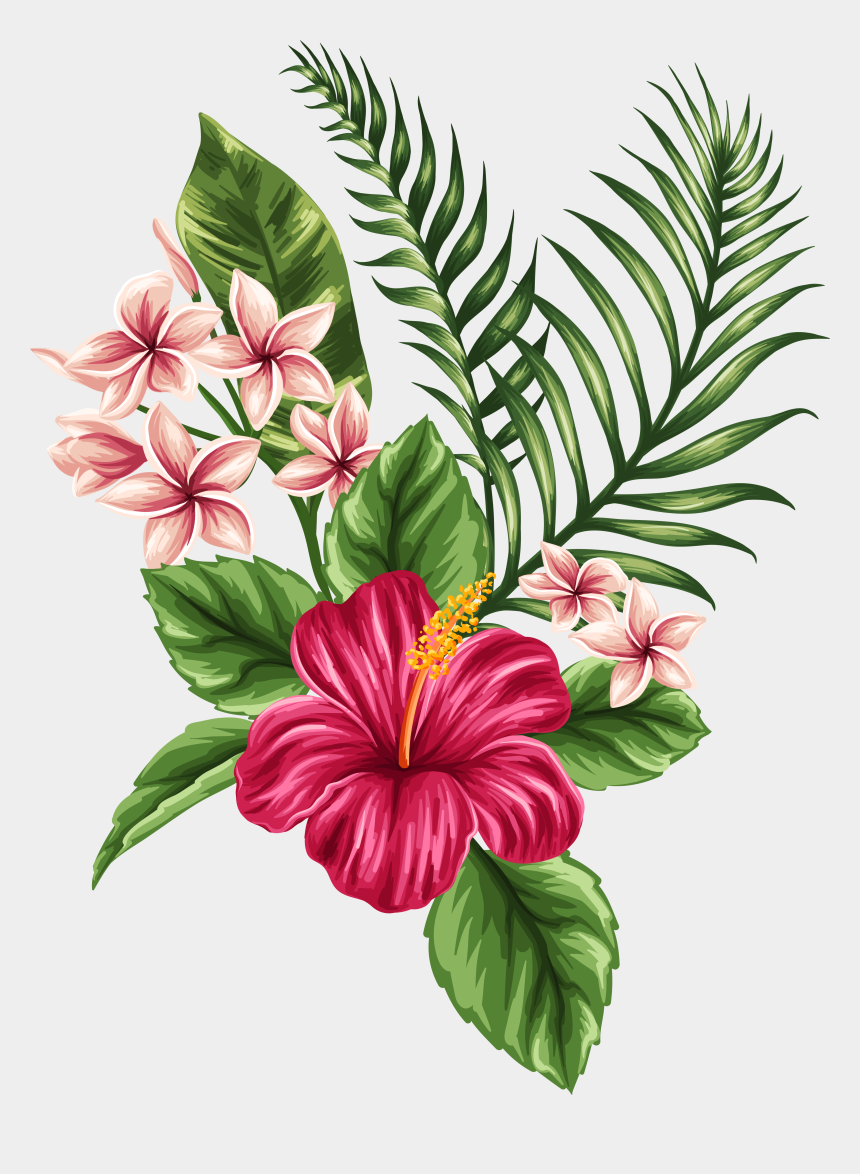 hibiscus clipart, Cartoons - Фото, Автор Soloveika На Яндекс - Tropical Flower Drawing