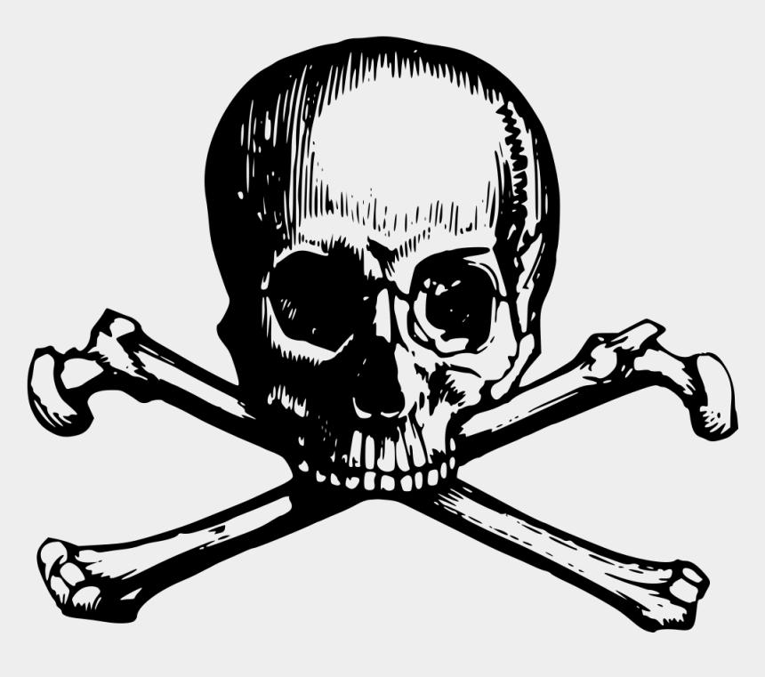skull clip art, Cartoons - Skull And Crossbones - Skull And Bones Tattoo Transparent