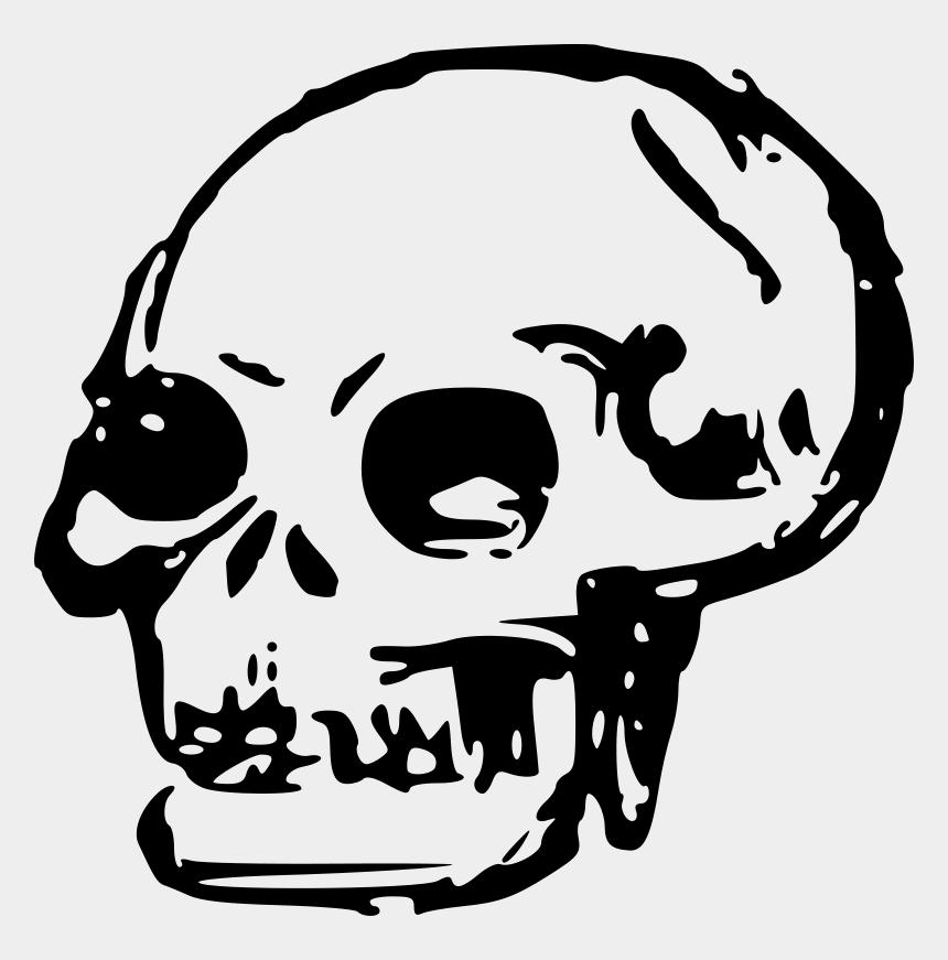 skull clip art, Cartoons - Free Vector Human Skull Clip Art - Transparent Skull Clip Art