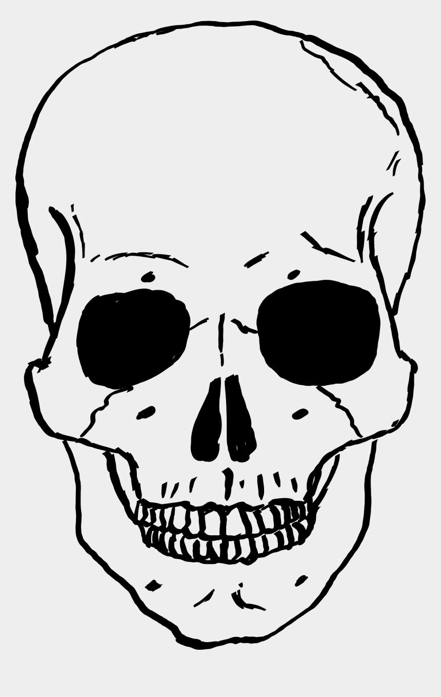 skull clip art, Cartoons - Narrowhouse Skull Clipart - Human Skull Cartoon