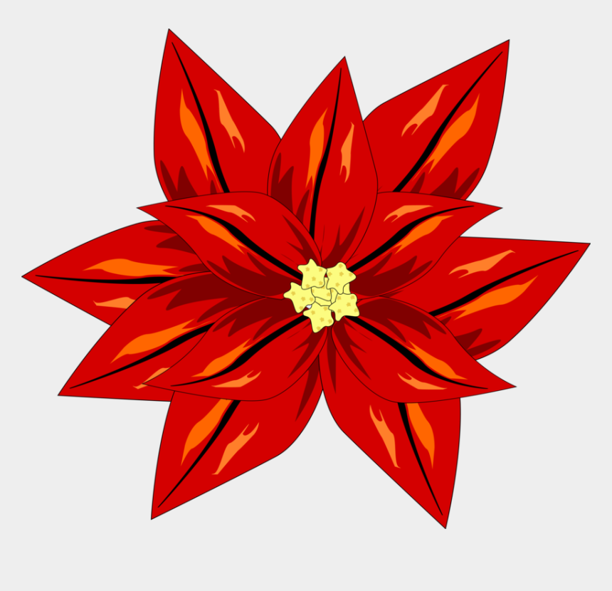 Christmas Poinsettia Clipart png download - 2201*2354 - Free Transparent  Poinsettia png Download. - CleanPNG / KissPNG