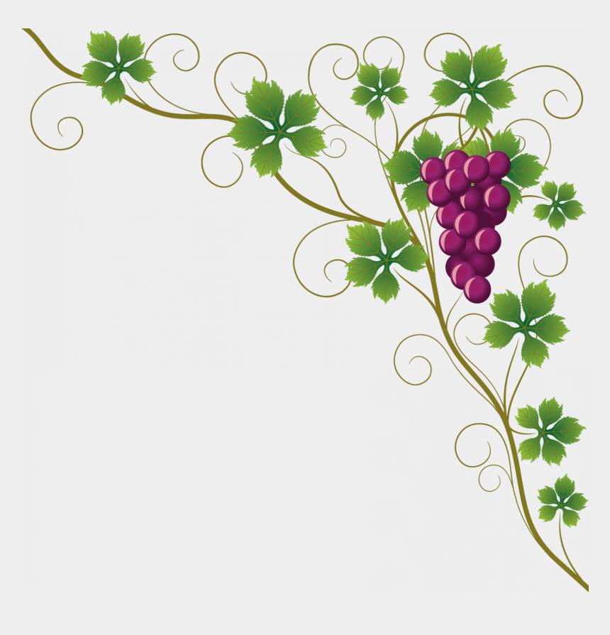 vines clipart, Cartoons - Grape Vines Clipart - Grape Vine Clipart Border