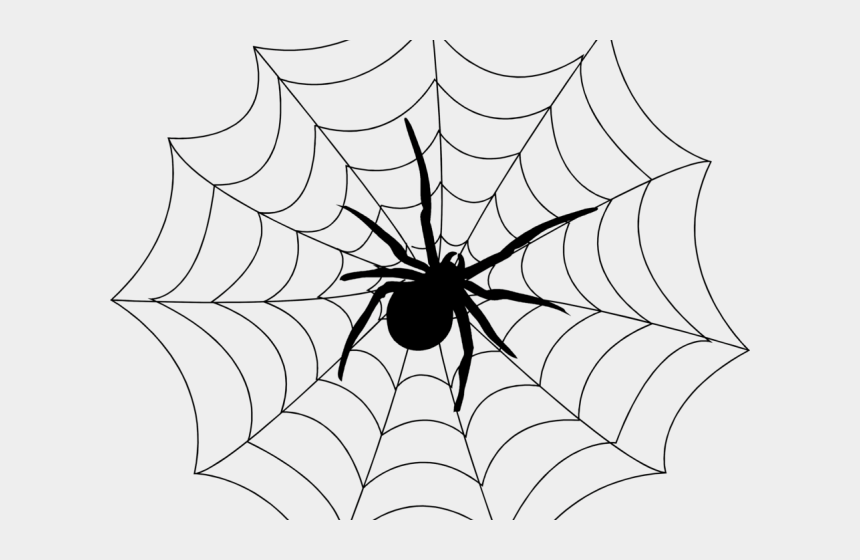 spider web background clipart, Cartoons - Web Of A Spider