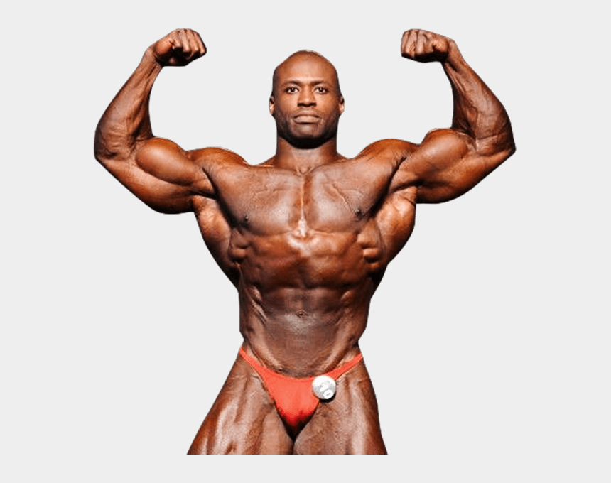 bodybuilding clipart, Cartoons - Transparent Muscles Bodybuilder - Body Builder Photo Png