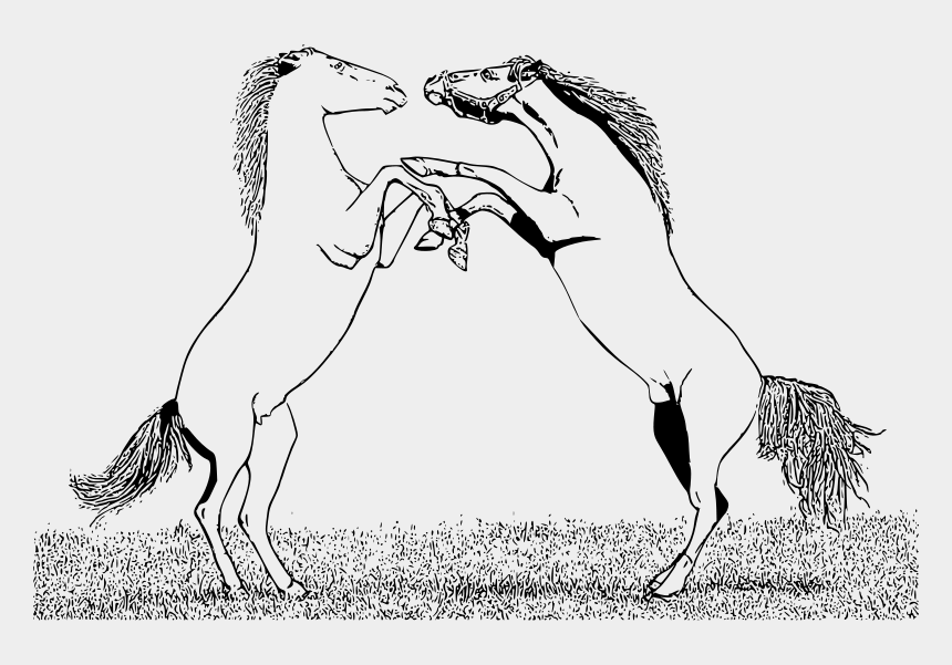 fighting clipart, Cartoons - Horse Fight Coloring Pages