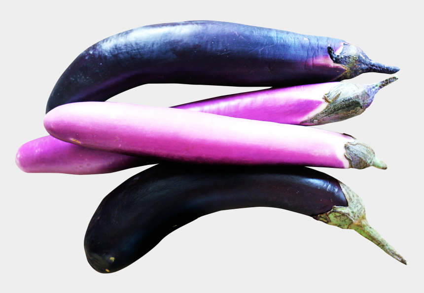 brinjal clipart, Cartoons - This Png File Is About Brinjal , Eggplant , Vegetables - Plante Aubergine Clipart Transparent