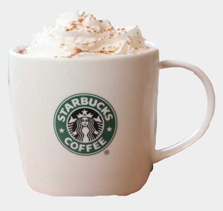 Starbucks Coffee Hotchocolate Whippedcream Mug