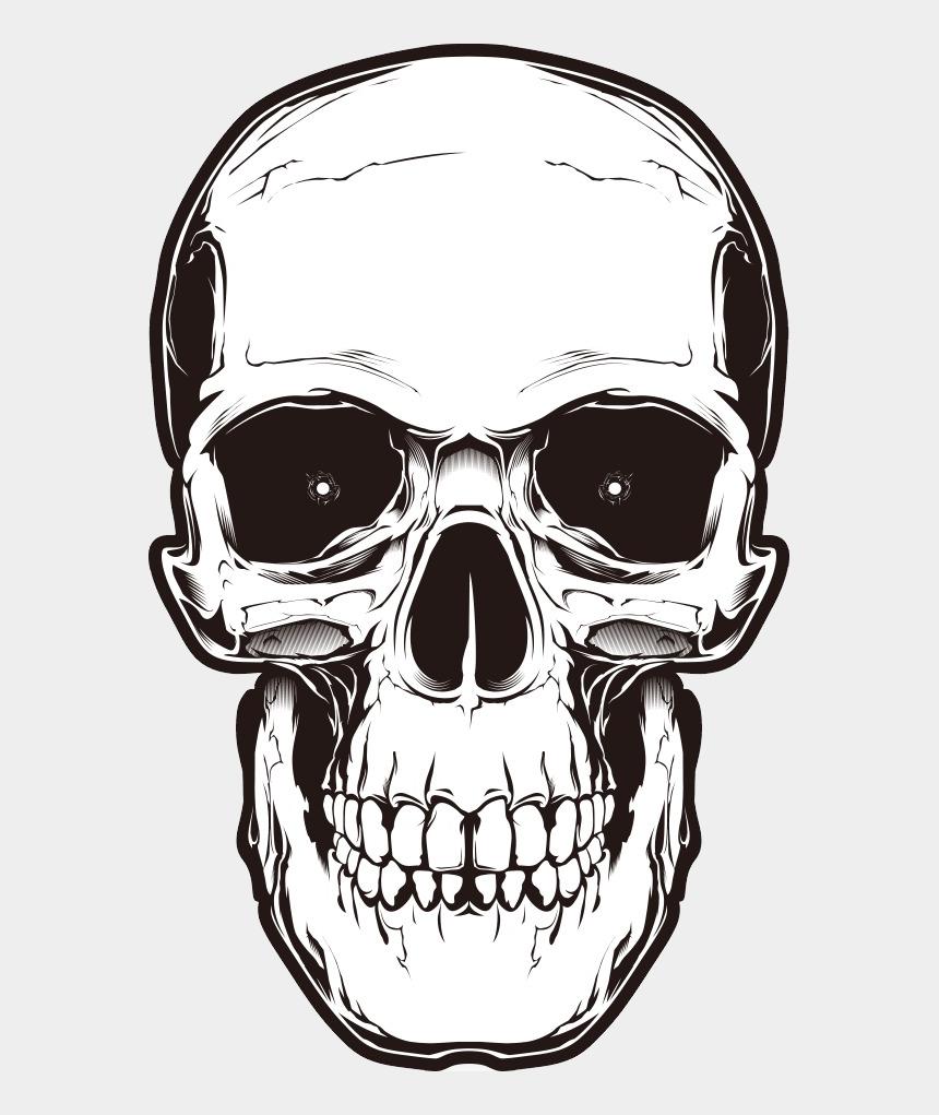 skulls clipart, Cartoons - Memento Mori, Human Skull, Free, Design, Skulls, Horror, - Transparent Skull